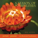 Season of Possibilities